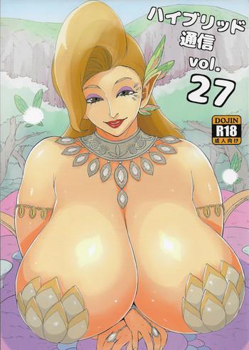hybrid tsuushin vol 27 cover